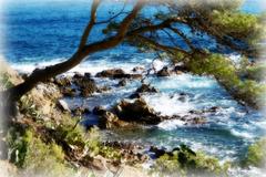 Rêve de mer... Sea dream... [ON EXPLORE]