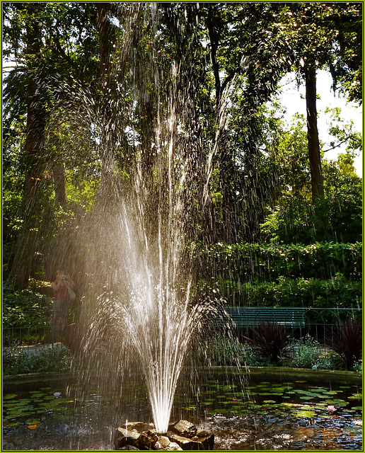 Una bella fontana riattivata ai Parchi di Nervi - (936)