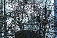 Gläserne Fassade ( 5 x PiP)