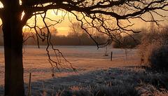 Frostiger Januarmorgen