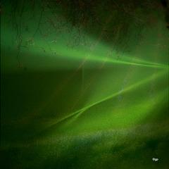 Green Forever