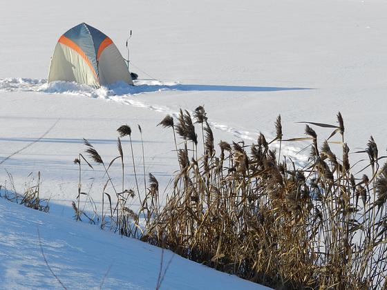Зимняя<strong>прогу<\/strong>лка. winter walk.