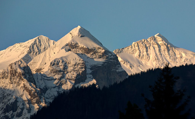 Rosenhorn, Mittelhorn,Wetterhorn