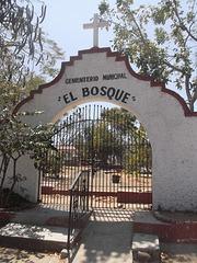 """"""" El Bosque"""""""