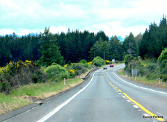 South Of Tokoroa.