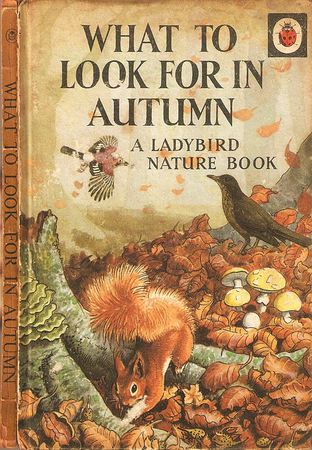 What to look for in Autumn. A Ladybird Nature Book 1960