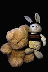 Lapinou c'est fait un nouveau copain , lui aussi lâchement abandonné . Depuis ce jour ils sont inséparables , la preuve en image .