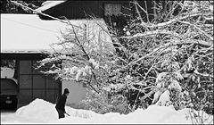 Neighbour pushing snow.