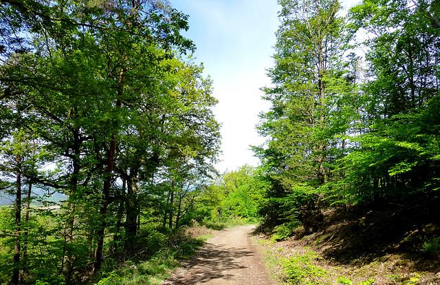 DE - Hönningen - Auf dem Teufelsleyweg