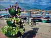 Alanya : il molo delle barche