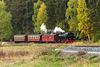 01 - Zug der HSB (Selketalbahn) bei Sternhaus-Haferfeld