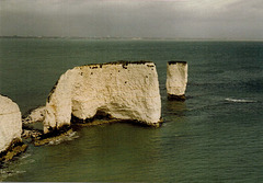 Old Harry Rocks, Dorset UK.