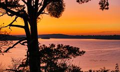 Wannsee Sunset