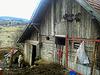 Animals in the village (PiP)