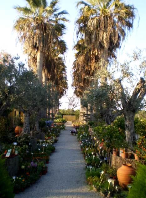 Garden of Geojardim.