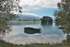 Un matin, au bord du lac de Gruyères ...