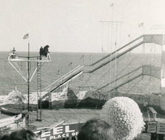 Bear on a Bicycle at the Steel Pier, Atlantic City, N.J., 1957 (Cropped)
