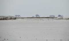 Sankt Peter-Ording am Horizont
