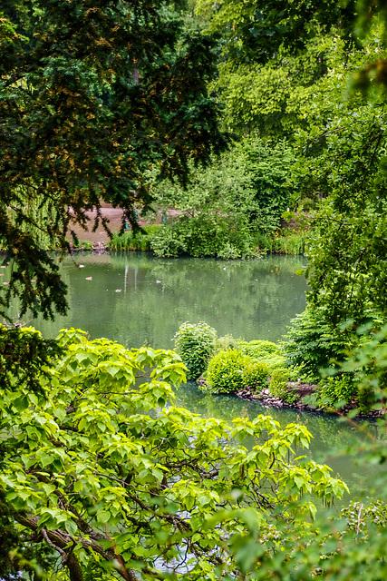 Schöne Heimat: Der Schlosspark in Bad Homburg