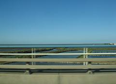 Beyound the rails, the vastness of  Tagus Floodplain