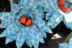IMG 8012-001-Blue & Orange Flowers