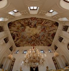 Plafond à l'Orangerie