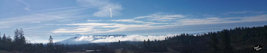 brilliant-foggy-morning-pano-01.29.19