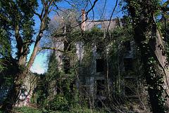 L'univers glauque d'une maison hantée