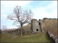 Burg Manderscheid, Manderscheid 027