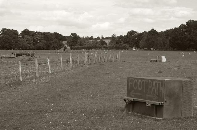 Footpath across the farm