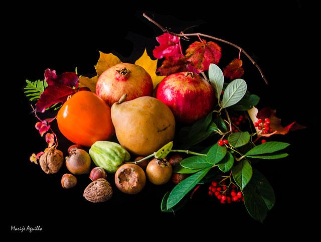 Frutos de otoño