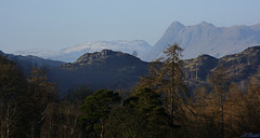 The Langdale Pikes from Tarn Hows