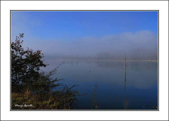 Niebla al amanecer sobre el pantano