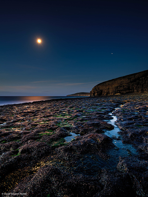 Dancing Ledge by Moonlight