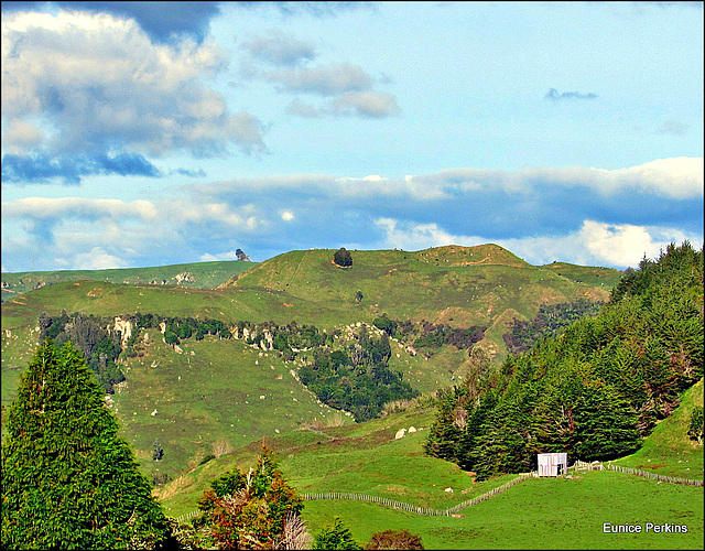 Rural Landscape.