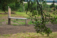 Bench in the station masters orchard!