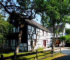 DE - Schleiden - Wolfgarten