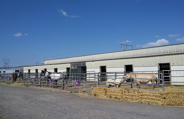 Klamath Equestrian Center