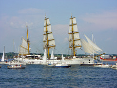 Gorch Fock  -  Windjammerparade in Kiel (PIP)