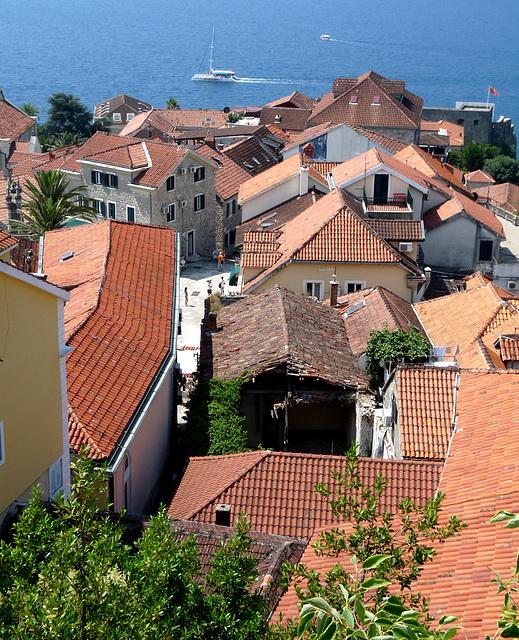 Herceg Novi- Roofscape