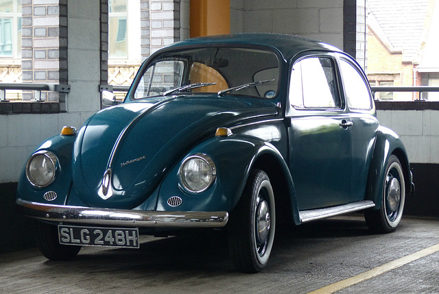 A Beetle in Liverpool - 14 July 2015