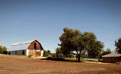 Suburban farm