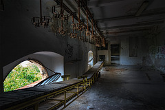 Abandoned Trieste - transport line with view
