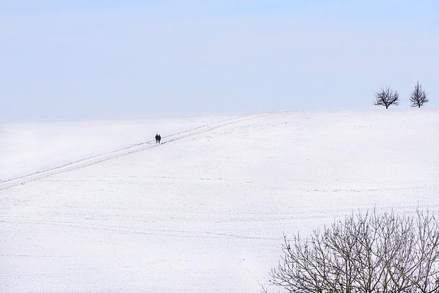 Winter - Inverno - Hiver
