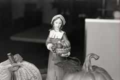 It's Harvest Time, Pilgrim