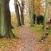Walking path in Autumn 2