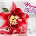 Happy Easter ~ Fröhliche Ostern ~ Joyeuses Pâques
