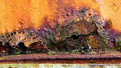 Colourful Crust of Rust!