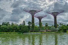 Dragonfly lake with Supertrees and Flower Dome conservatory in the Gardens by the Bay in Singapore