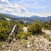 Parc naturel régional du Verdon (6)